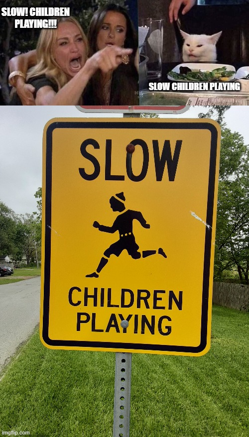 Slow Children Playing |  SLOW! CHILDREN PLAYING!!! SLOW CHILDREN PLAYING | image tagged in woman yelling at cat | made w/ Imgflip meme maker