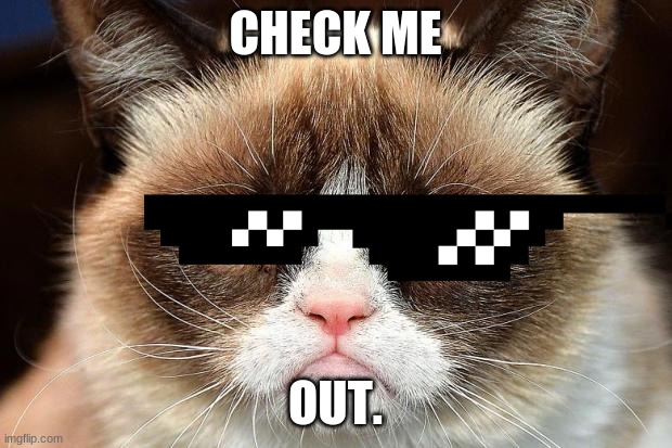 Grumpy Cat Not Amused |  CHECK ME; OUT. | image tagged in memes,grumpy cat not amused,grumpy cat | made w/ Imgflip meme maker