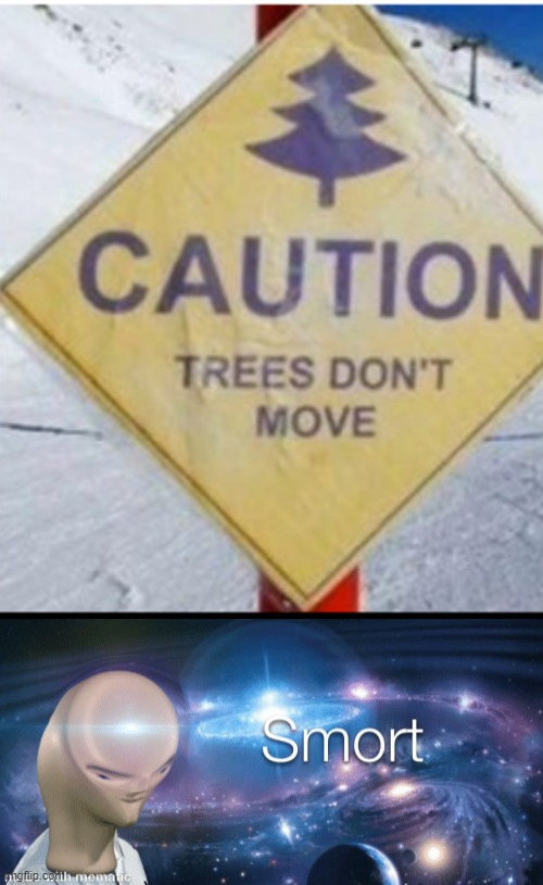 watch out for those trees | image tagged in stonks,i am smort,fun,memes,funny | made w/ Imgflip meme maker
