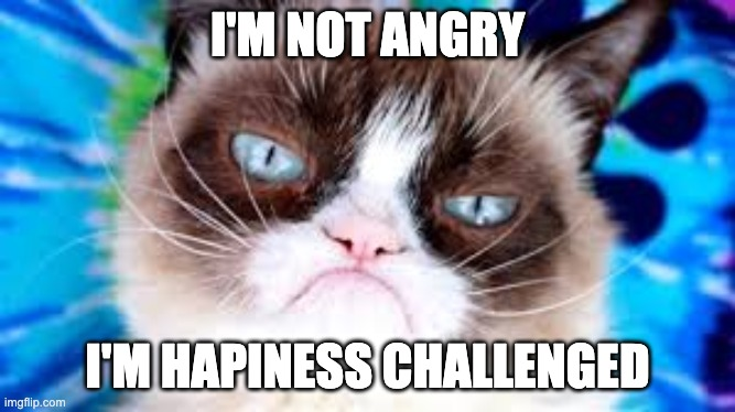 i'm not angry |  I'M NOT ANGRY; I'M HAPINESS CHALLENGED | image tagged in cats,happiness,funny | made w/ Imgflip meme maker