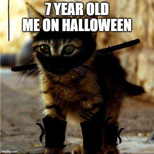 Ninja Cat |  7 YEAR OLD ME ON HALLOWEEN | image tagged in ninja cat | made w/ Imgflip meme maker