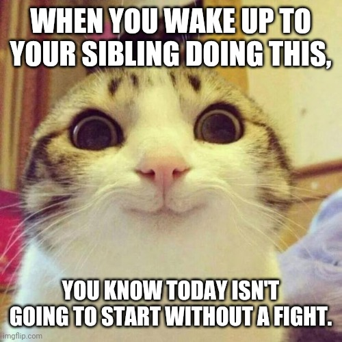 Smiling Cat |  WHEN YOU WAKE UP TO YOUR SIBLING DOING THIS, YOU KNOW TODAY ISN'T GOING TO START WITHOUT A FIGHT. | image tagged in memes,smiling cat | made w/ Imgflip meme maker
