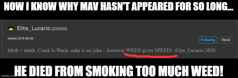 Can we get an F in the chat for Mav? |  NOW I KNOW WHY MAV HASN'T APPEARED FOR SO LONG... HE DIED FROM SMOKING TOO MUCH WEED! | image tagged in memes,funny,weed,smoke weed everyday,dead,haha | made w/ Imgflip meme maker