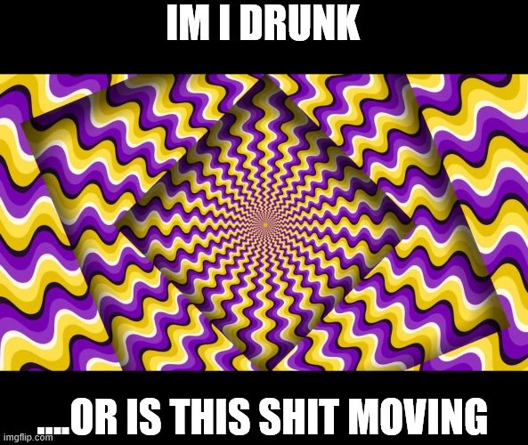 seriously |  IM I DRUNK; ....OR IS THIS SHIT MOVING | image tagged in optical illusion,drunk,wtf,omg,look | made w/ Imgflip meme maker