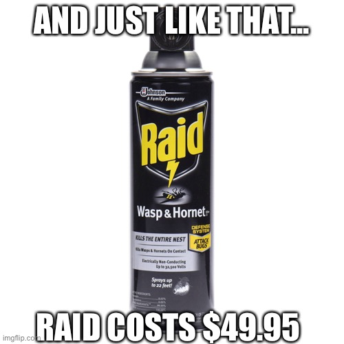 Murder hornets |  AND JUST LIKE THAT... RAID COSTS $49.95 | image tagged in fun,murder hornet | made w/ Imgflip meme maker