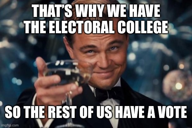 THAT'S WHY WE HAVE THE ELECTORAL COLLEGE SO THE REST OF US HAVE A VOTE | image tagged in memes,leonardo dicaprio cheers | made w/ Imgflip meme maker