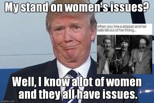 Best Meme Ever = Reposted | image tagged in trump meme,the donald,womens rights,dumb broads | made w/ Imgflip meme maker