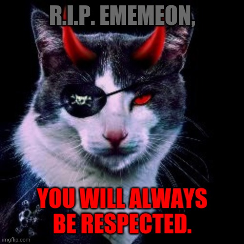 Captain-Pirate_Ememeon | R.I.P. EMEMEON, YOU WILL ALWAYS BE RESPECTED. | image tagged in captain-pirate_ememeon | made w/ Imgflip meme maker