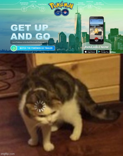 Hey are you advertising Pokémon go during quarantine? | image tagged in loading cat,quarantine,pokemon,pokemon go,memes,fun | made w/ Imgflip meme maker