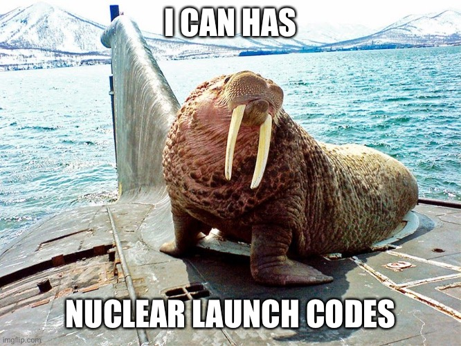 Nuclear Walrus |  I CAN HAS; NUCLEAR LAUNCH CODES | image tagged in nuclear,walrus,submarine,russia | made w/ Imgflip meme maker