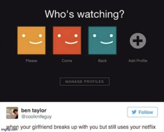 Netflix and chill | image tagged in funny meme,netflix | made w/ Imgflip meme maker