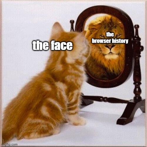 face vs ability |  the browser history; the face | image tagged in cats and mirrors | made w/ Imgflip meme maker