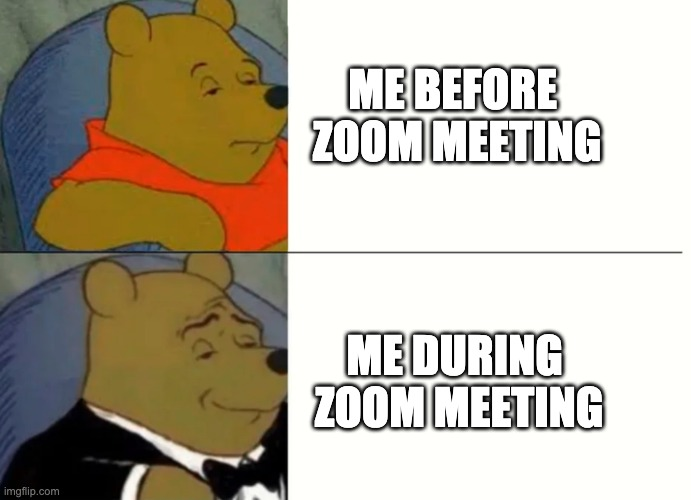 Zoom Meeting Before & After |  ME BEFORE  ZOOM MEETING; ME DURING  ZOOM MEETING | image tagged in fancy winnie the pooh meme | made w/ Imgflip meme maker