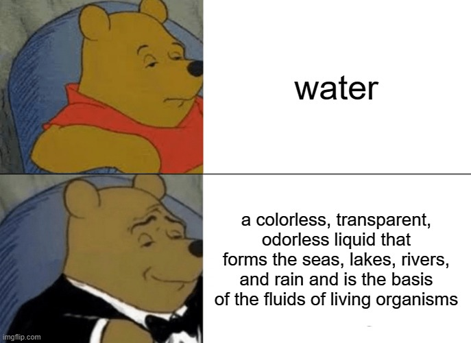 Tuxedo Winnie The Pooh Meme |  water; a colorless, transparent, odorless liquid that forms the seas, lakes, rivers, and rain and is the basis of the fluids of living organisms | image tagged in memes,tuxedo winnie the pooh | made w/ Imgflip meme maker