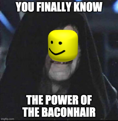 Sidious Error |  YOU FINALLY KNOW; THE POWER OF THE BACONHAIR | image tagged in memes,sidious error | made w/ Imgflip meme maker