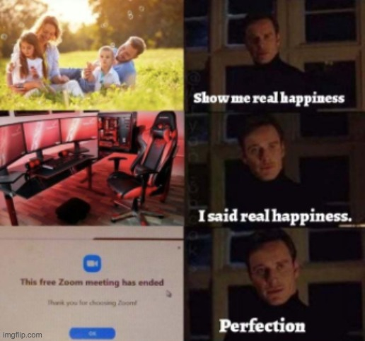 Ah Perfection | image tagged in perfection,zoom,school,memes,funny,lol | made w/ Imgflip meme maker