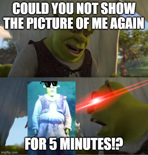 Shrek For Five Minutes |  COULD YOU NOT SHOW THE PICTURE OF ME AGAIN; FOR 5 MINUTES!? | image tagged in shrek for five minutes,dank memes,memes,shrek | made w/ Imgflip meme maker