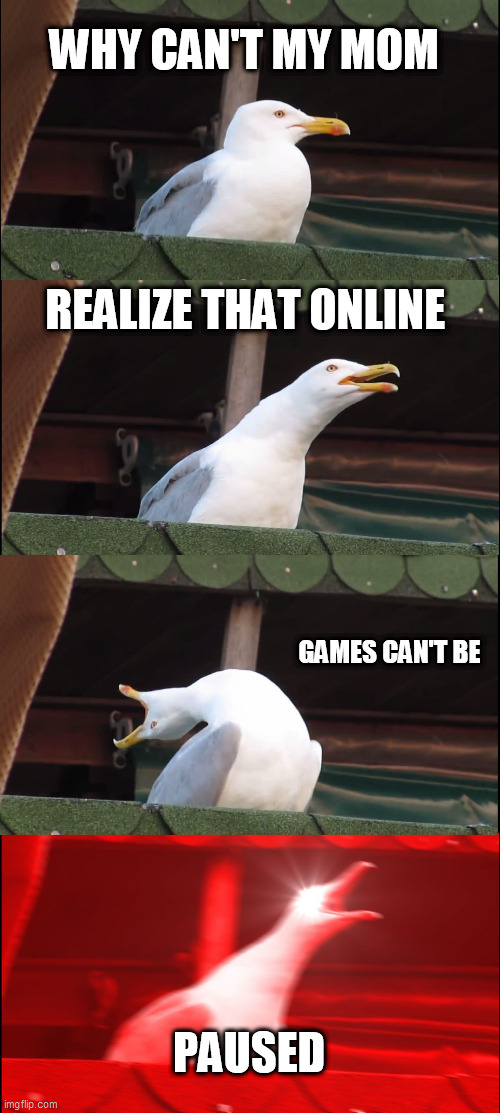 (No title) |  WHY CAN'T MY MOM; REALIZE THAT ONLINE; GAMES CAN'T BE; PAUSED | image tagged in memes,inhaling seagull | made w/ Imgflip meme maker