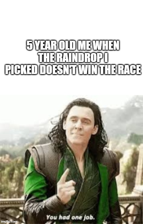 anyone else |  5 YEAR OLD ME WHEN THE RAINDROP I PICKED DOESN'T WIN THE RACE | image tagged in you had one job,meme,thor,loki | made w/ Imgflip meme maker