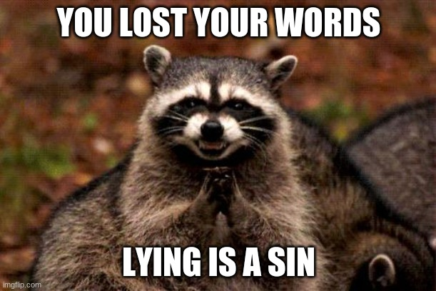 Evil Plotting Raccoon Meme | YOU LOST YOUR WORDS LYING IS A SIN | image tagged in memes,evil plotting raccoon | made w/ Imgflip meme maker