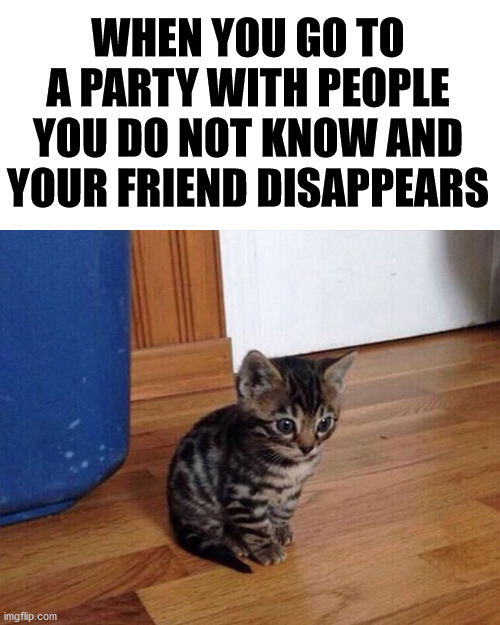 When you are not comfortable talking to people you do not know. |  WHEN YOU GO TO A PARTY WITH PEOPLE YOU DO NOT KNOW AND YOUR FRIEND DISAPPEARS | image tagged in socially awkward,forever alone | made w/ Imgflip meme maker