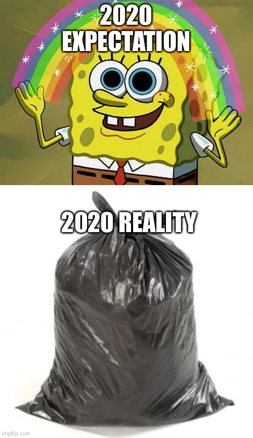 2020 in a Nutshell |  2020 EXPECTATION; 2020 REALITY | image tagged in memes,imagination spongebob | made w/ Imgflip meme maker
