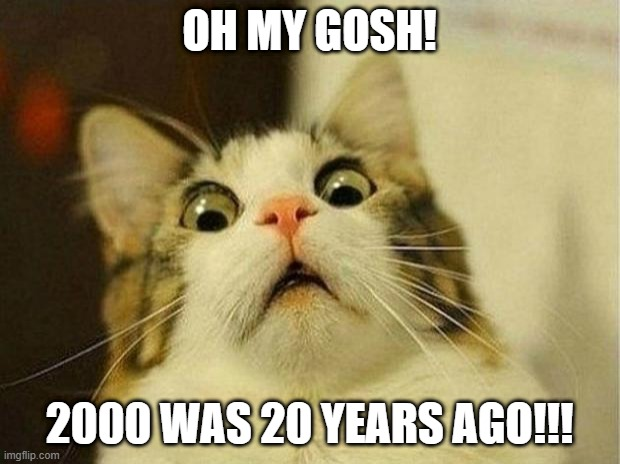 oh gosh time flies fast |  OH MY GOSH! 2000 WAS 20 YEARS AGO!!! | image tagged in memes,scared cat,cat,funny,2020 | made w/ Imgflip meme maker