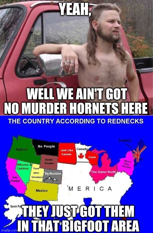 YEAH, WELL WE AIN'T GOT NO MURDER HORNETS HERE THEY JUST GOT THEM IN THAT BIGFOOT AREA | image tagged in hillbilly mullet | made w/ Imgflip meme maker