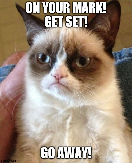 Grumpy Cat |  ON YOUR MARK! GET SET! GO AWAY! | image tagged in memes,grumpy cat | made w/ Imgflip meme maker