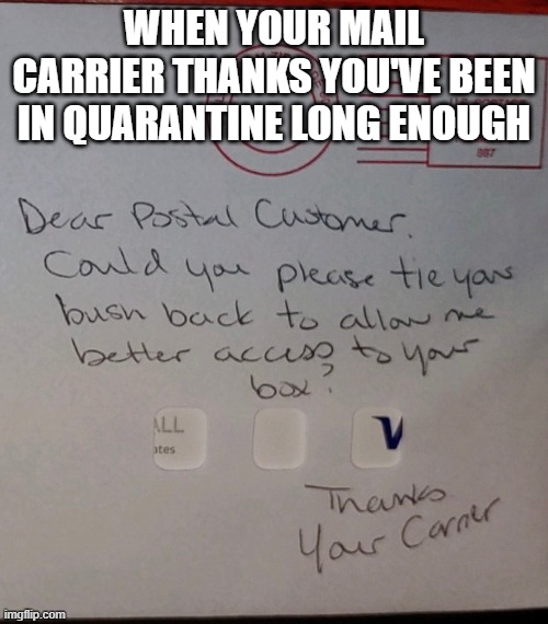 Quarantine Bush |  WHEN YOUR MAIL CARRIER THANKS YOU'VE BEEN IN QUARANTINE LONG ENOUGH | image tagged in mail,mailbox,post office | made w/ Imgflip meme maker