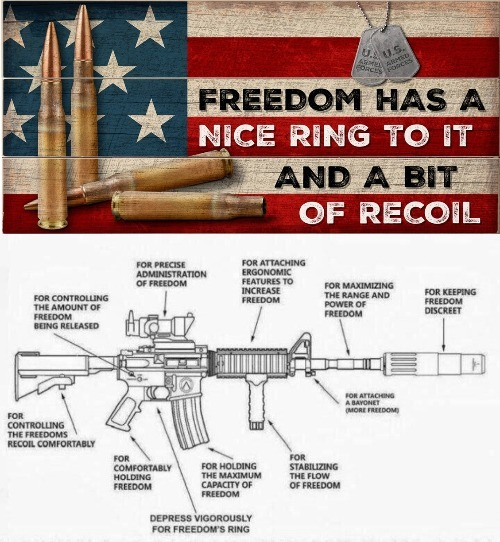 Freedom has a nice ring to it and a bit of recoil | image tagged in freedom,let freedom ring,2nd amendment,gun rights,recoil,us armed forces | made w/ Imgflip meme maker