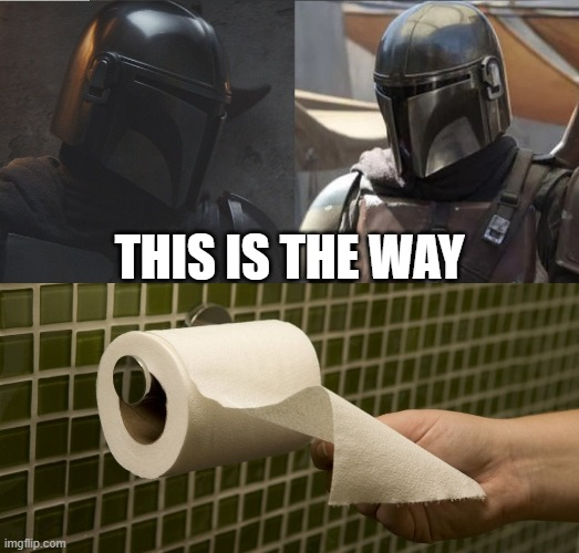 Toilet paper hanging |  THIS IS THE WAY | image tagged in this is the way | made w/ Imgflip meme maker