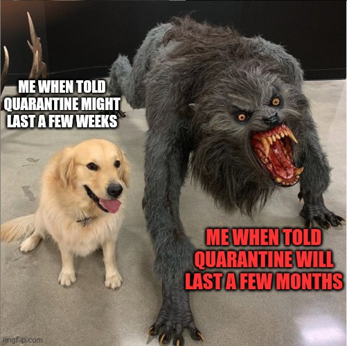 Quarantine transformation |  ME WHEN TOLD QUARANTINE MIGHT LAST A FEW WEEKS; ME WHEN TOLD QUARANTINE WILL LAST A FEW MONTHS | image tagged in dog vs werewolf | made w/ Imgflip meme maker
