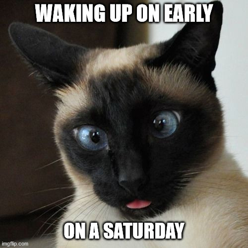 Waking up on Saturday |  WAKING UP ON EARLY; ON A SATURDAY | image tagged in saturday,cat,waking up | made w/ Imgflip meme maker