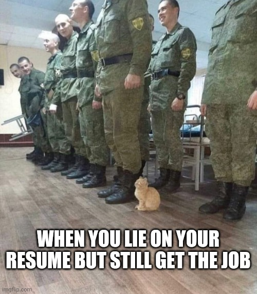 When you lie on your resume but still get the job... |  WHEN YOU LIE ON YOUR RESUME BUT STILL GET THE JOB | image tagged in lies,job interview,funny memes,cat,soldier | made w/ Imgflip meme maker
