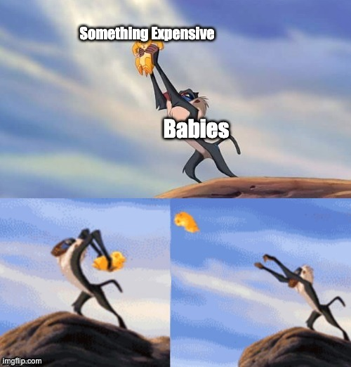 Babies vs Money |  Something Expensive; Babies | image tagged in simba rafiki lion king,babies,money,expensive | made w/ Imgflip meme maker