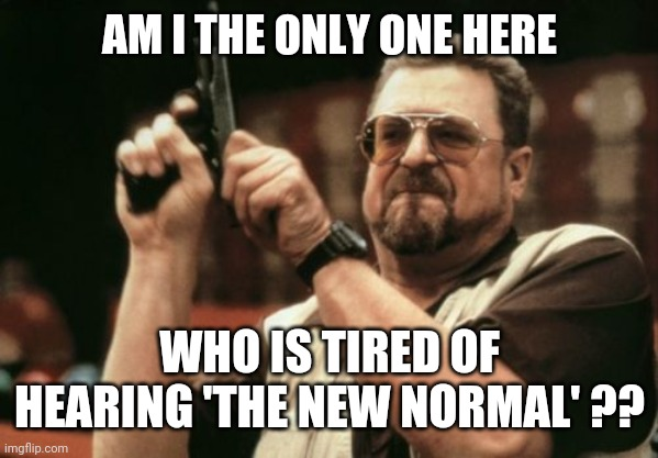 The No New Normal |  AM I THE ONLY ONE HERE; WHO IS TIRED OF HEARING 'THE NEW NORMAL' ?? | image tagged in memes,am i the only one around here,new normal,lockdown | made w/ Imgflip meme maker
