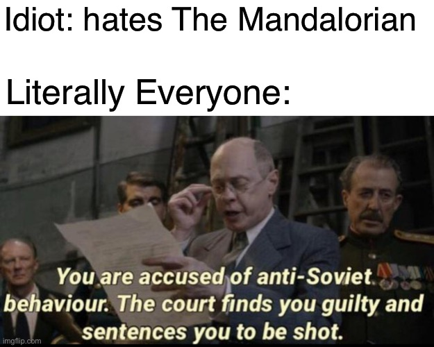 You are accused of anti-soviet behavior |  Idiot: hates The Mandalorian; Literally Everyone: | image tagged in you are accused of anti-soviet behavior | made w/ Imgflip meme maker
