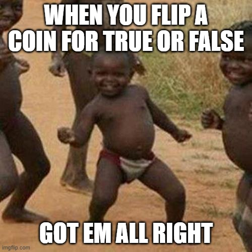 test |  WHEN YOU FLIP A COIN FOR TRUE OR FALSE; GOT EM ALL RIGHT | image tagged in memes,third world success kid | made w/ Imgflip meme maker
