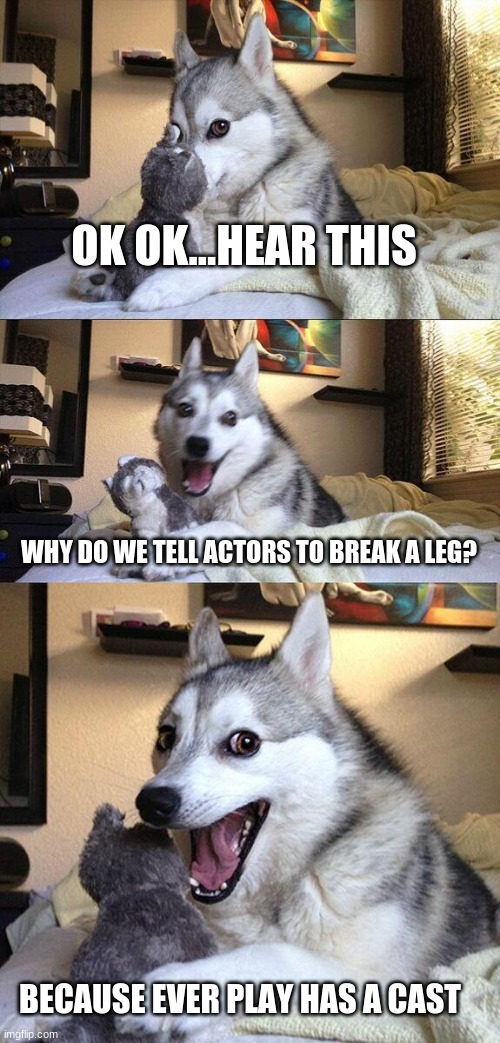 bad pun dog |  OK OK...HEAR THIS; WHY DO WE TELL ACTORS TO BREAK A LEG? BECAUSE EVER PLAY HAS A CAST | image tagged in memes,bad pun dog | made w/ Imgflip meme maker