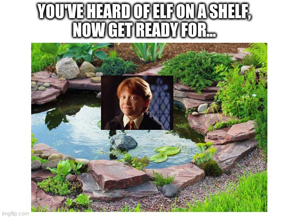 kinda easy |  YOU'VE HEARD OF ELF ON A SHELF, NOW GET READY FOR... | image tagged in hello | made w/ Imgflip meme maker