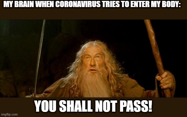 gandalf you shall not pass |  MY BRAIN WHEN CORONAVIRUS TRIES TO ENTER MY BODY:; YOU SHALL NOT PASS! | image tagged in gandalf you shall not pass,coronavirus,lord of the rings,memes,funny,movies | made w/ Imgflip meme maker