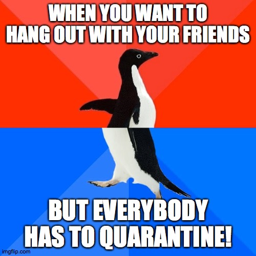 The struggle is real! |  WHEN YOU WANT TO HANG OUT WITH YOUR FRIENDS; BUT EVERYBODY HAS TO QUARANTINE! | image tagged in memes,socially awesome awkward penguin,quarantine,friends | made w/ Imgflip meme maker