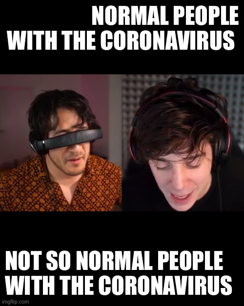 NORMAL PEOPLE WITH THE CORONAVIRUS; NOT SO NORMAL PEOPLE WITH THE CORONAVIRUS | image tagged in youtubers | made w/ Imgflip meme maker