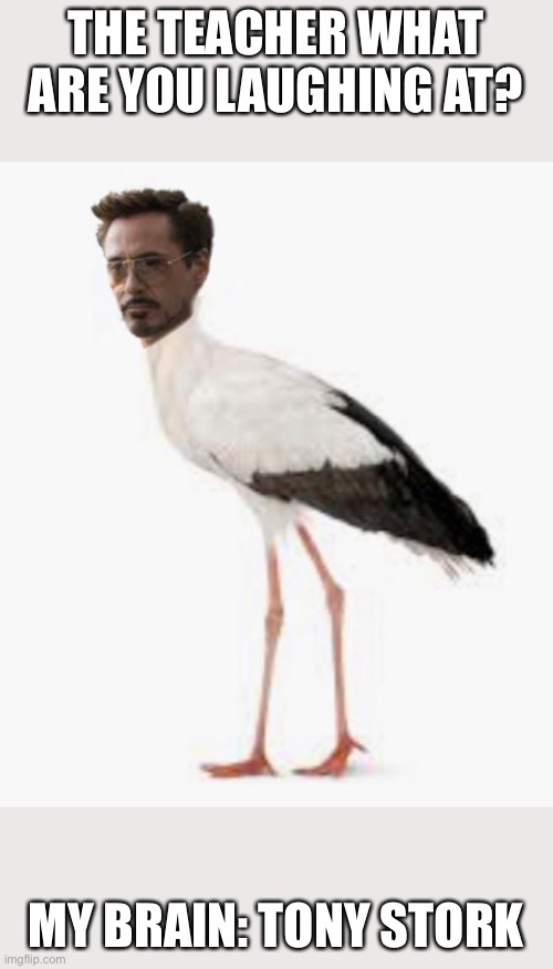 Tony stork |  THE TEACHER WHAT ARE YOU LAUGHING AT? MY BRAIN: TONY STORK | image tagged in lmao,tony stark,stork | made w/ Imgflip meme maker