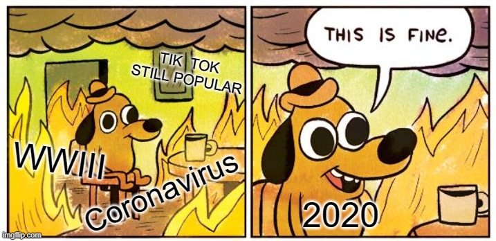 This Is Fine |  TIK  TOK STILL POPULAR; PLZ UPDOOT; WWIII; Coronavirus; 2020 | image tagged in memes,this is fine | made w/ Imgflip meme maker