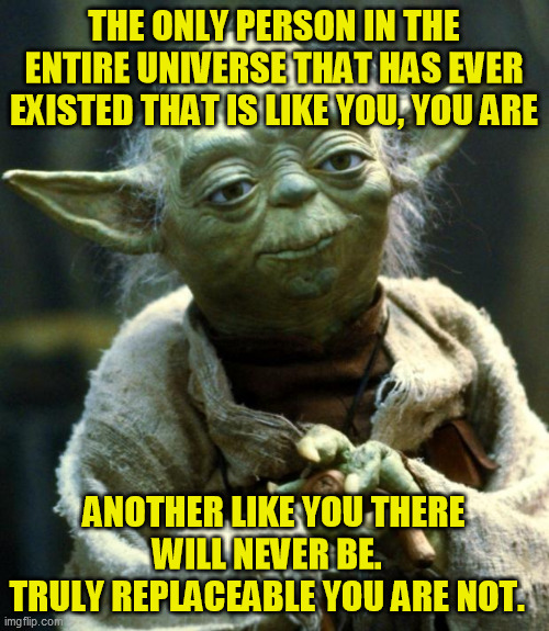 Doesn't hurt to remember sometimes. People can argue details, but it's still true, and no one can make your contribution either | THE ONLY PERSON IN THE ENTIRE UNIVERSE THAT HAS EVER EXISTED THAT IS LIKE YOU, YOU ARE ANOTHER LIKE YOU THERE WILL NEVER BE.   TRULY REPLACE | image tagged in memes,star wars yoda,individuality | made w/ Imgflip meme maker