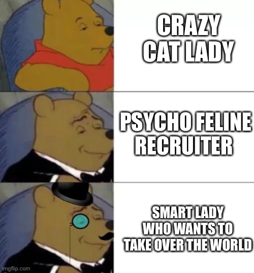 Truth |  CRAZY CAT LADY; PSYCHO FELINE RECRUITER; SMART LADY WHO WANTS TO TAKE OVER THE WORLD | image tagged in fancy pooh,cats,pooh,cat,truth | made w/ Imgflip meme maker