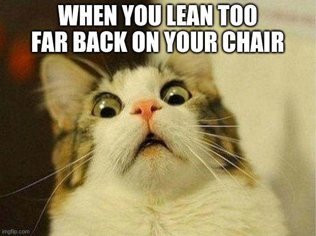 Scared Cat |  WHEN YOU LEAN TOO FAR BACK ON YOUR CHAIR | image tagged in memes,scared cat | made w/ Imgflip meme maker