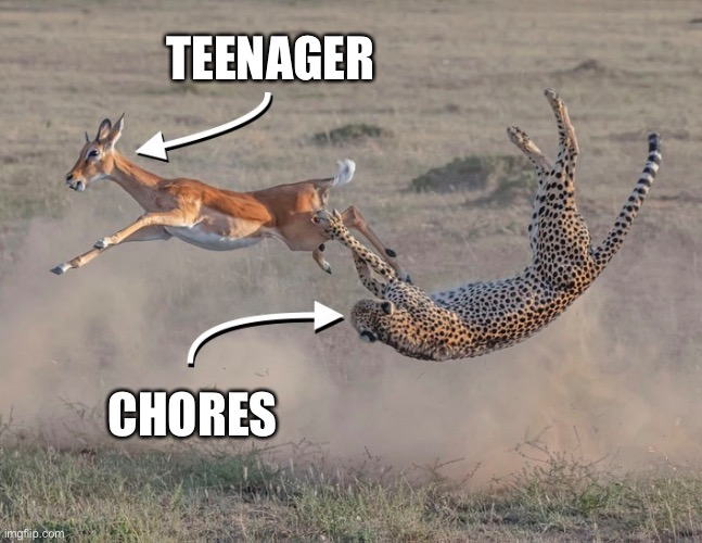 Narrow escape |  TEENAGER; CHORES | image tagged in close call,predator,prey,escape,yi liu | made w/ Imgflip meme maker